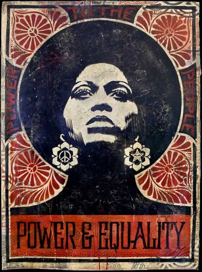 power-and-equality-copy-500x750