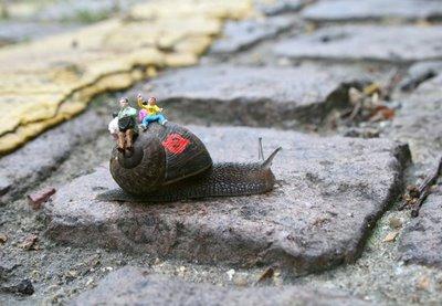 snailbus1-blog