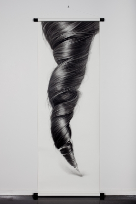 The hair of Hong Chun Zhang