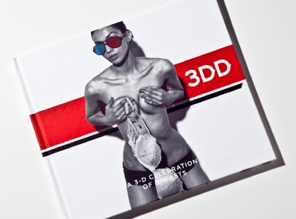3DD, the books of boobs... in 3D3DD, the books of boobs... in 3D
