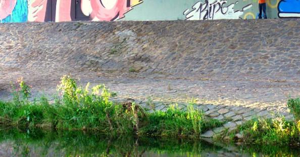 Typography Graffiti by RipoTypography Graffiti by Ripo