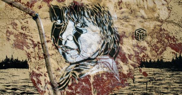 Stencil Art by C215Stencil Art by C215