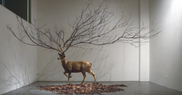 Myeongbeom Kim_Compositions and surreal sculptures