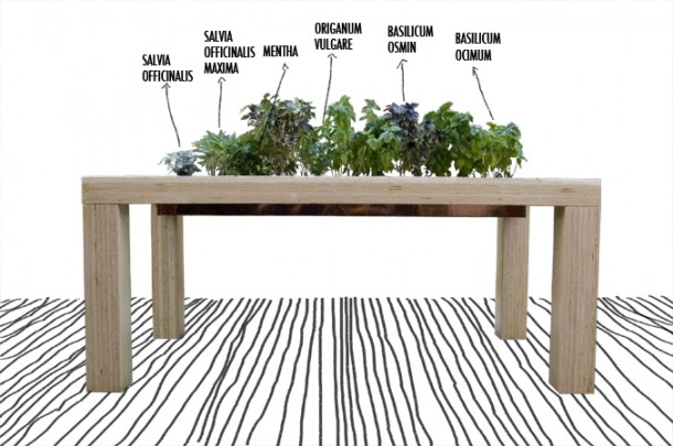 THE GROWING TABLE_Living together