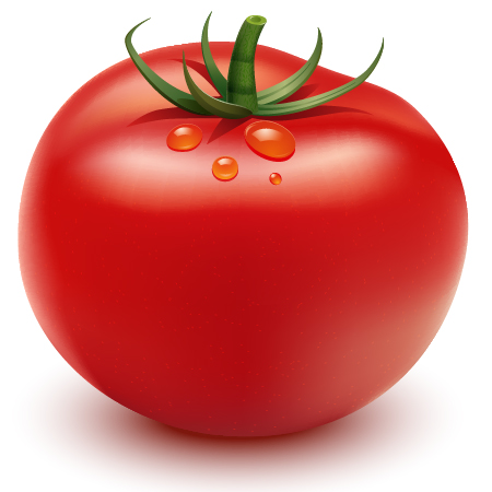 How to Illustrate a Tomato Using Adobe Illustrator