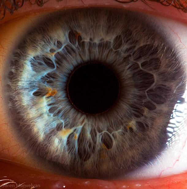 Your Beautiful EyesYour Beautiful Eyes