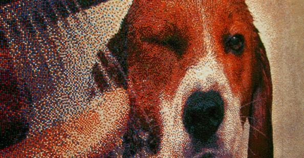 Pixelated Mosaic Beagle Made of 221K SprinklesPixelated Mosaic Beagle Made of 221K Sprinkles