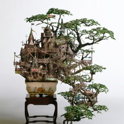 2_Aiba_Bonsai-B_view11