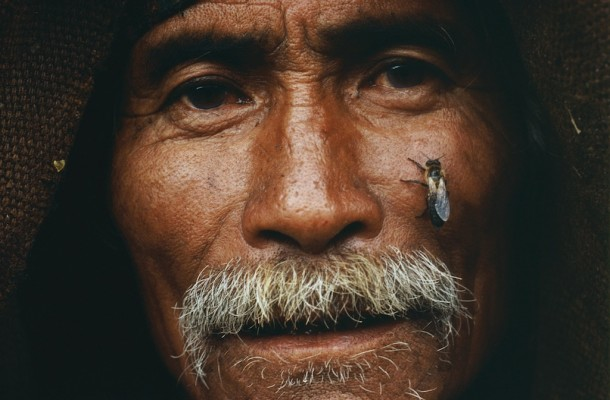Honey Hunters of Nepal