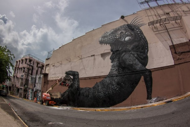 New Mural In Puerto Rico by ROANew Mural In Puerto Rico by ROA