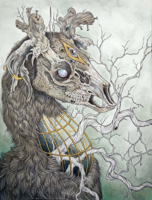 Anthropomorphic Creatures by Caitlin Hackett