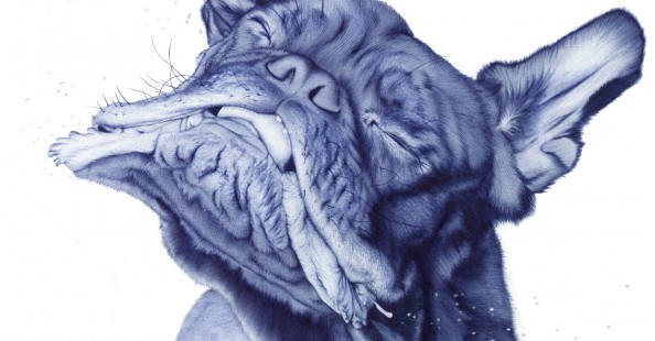 Ballpen drawings by Sarah Esteje