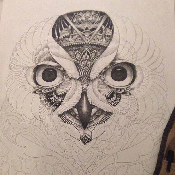 Drawings Of Owls Tumblr