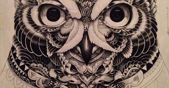 Owl Portraits by Ian MacArthurOwl Portraits by Ian MacArthur