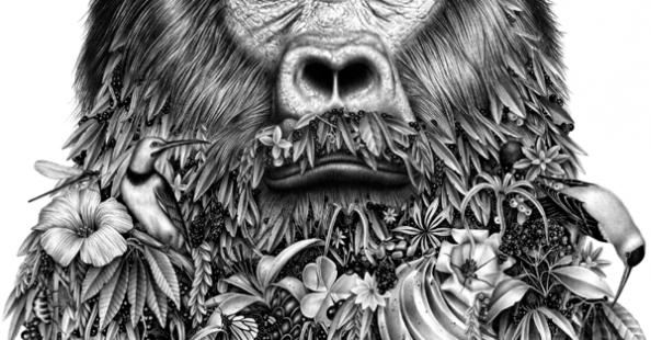 (English) Beautiful drawings by Violaine & Jeremy