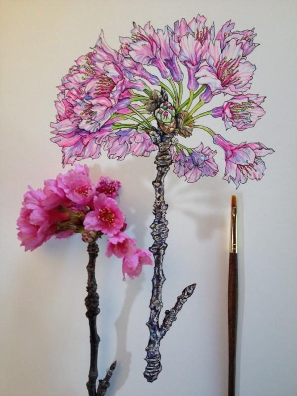 Flowers in Progress  A beautiful series of illustrations by Noel Badges Pugh (3)