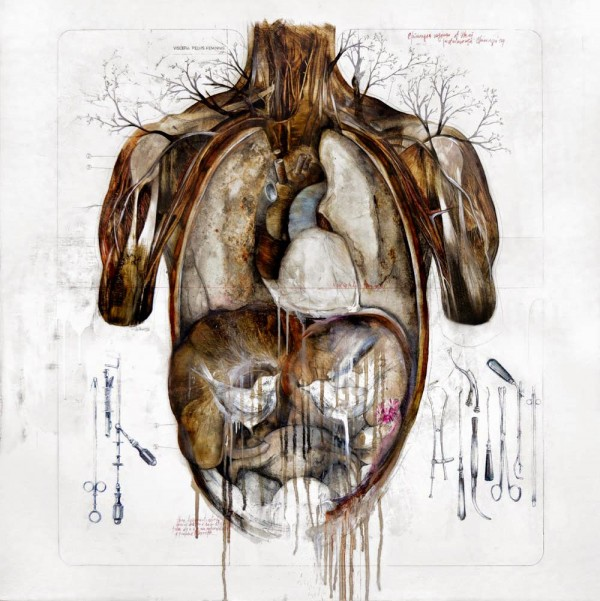 Anatomical illustrations by Nunzio Paci (1)