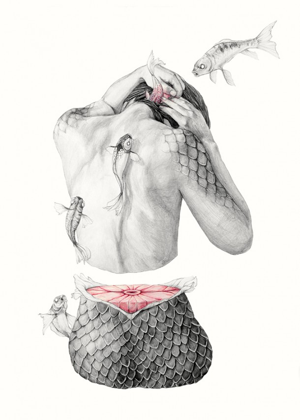 """Metamorfish"", a stunning series of drawings by Elisa Ancori"